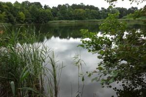 XVII-18.7.16-8-Kleiner Melangsee